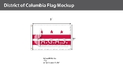 District of Columbia Flags 2x3 foot