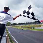 Checkered Stick Flags